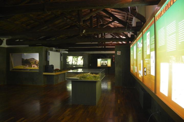 Museo Monti Prenestini - Vista totale della sala espositiva Ambienti