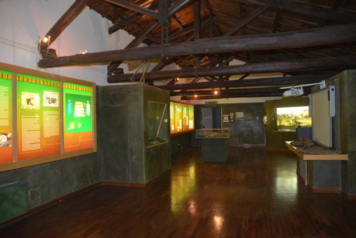 Museo Monti Prenestini -  Vista totale della sala Ambienti
