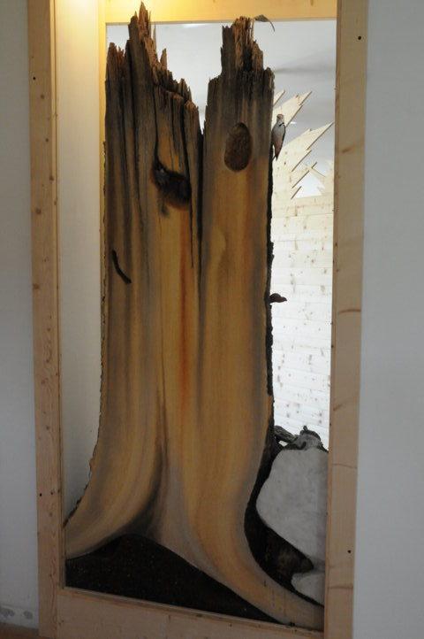 Il Tronco Marcescente - Vista lato interno