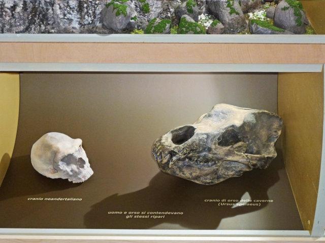 Geologia e Preistoria - Sezione Paleolitico