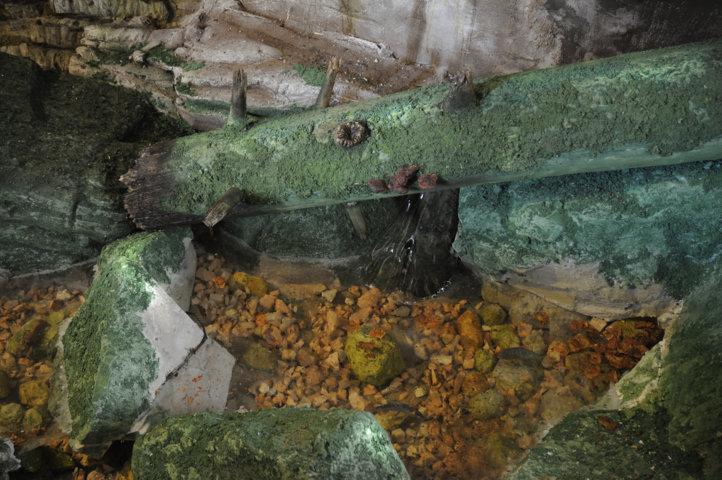 Il fiume Turcano - Particolare della pozza d'acqua