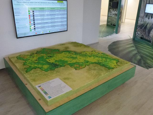 Museo della biodiversità - Pannello impronte