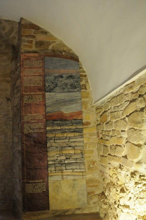 colonna stratigrafica