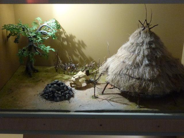 Diorama Capanna del Neolitico