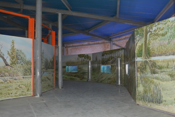 Museo Acquario del lago Trasimeno - esedra