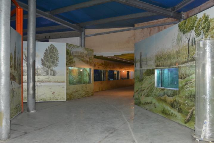 Museo Acquario del lago Trasimeno - Esedra del Lago e corridoio