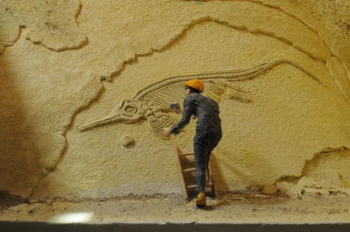 Fossilizzazione - Fase 4