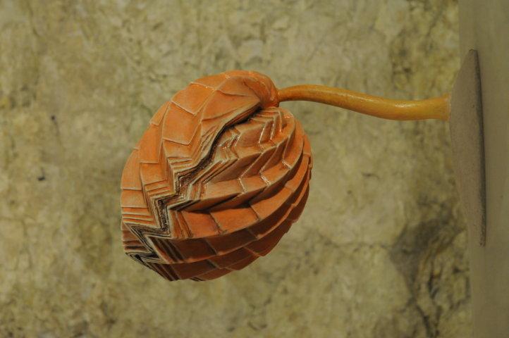 Dentro i fossili - Modello di Brachiopode