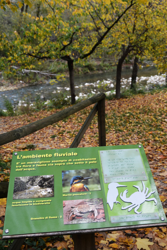 Greenway - Pannello ambiente fluviale