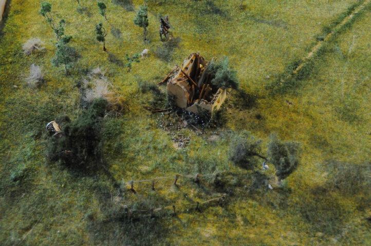 Battaglia di Custoza Villafranca - particolare