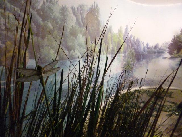 Primo Piano del diorama del Lago di Serranella