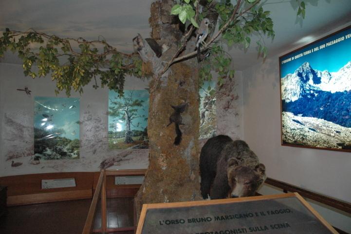 Musei del PNALM - sala Ambienti Appenninici