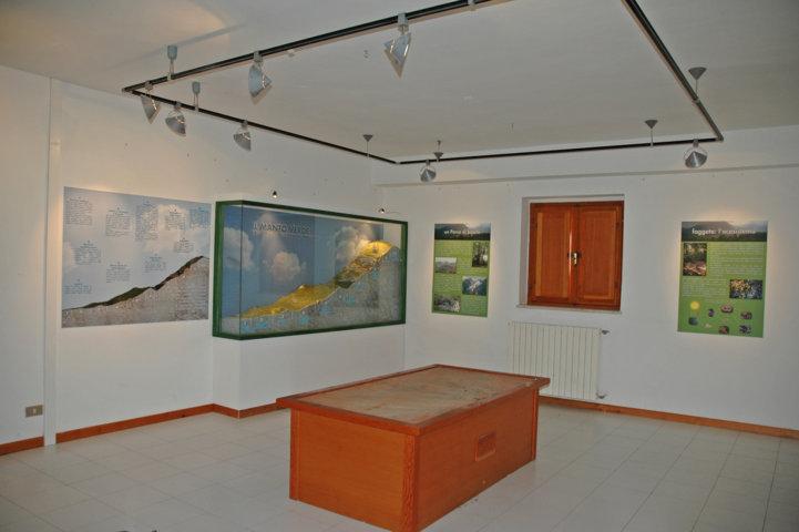 Museo della Lince - sala in allestimento