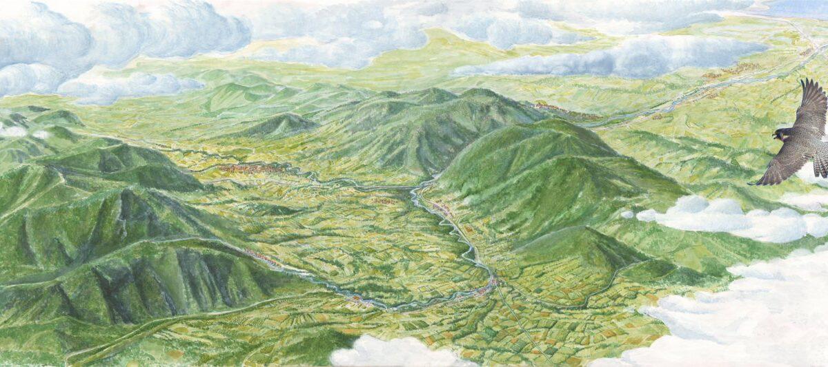 Val d'Esino con falco pellegrino