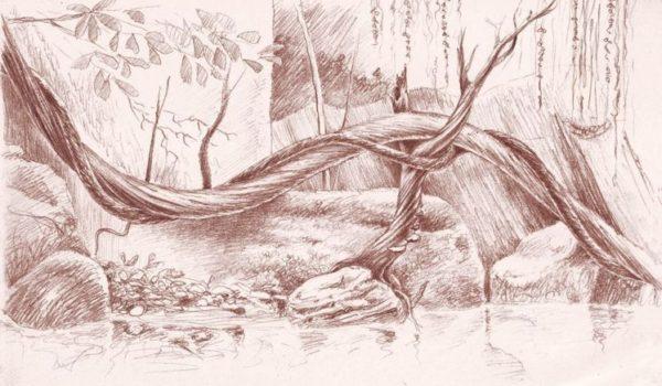 vasca iguane genova