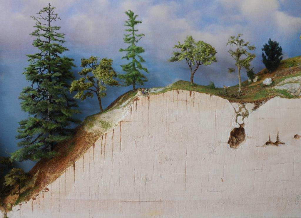 escursionisti osservano il grande Abete bianco