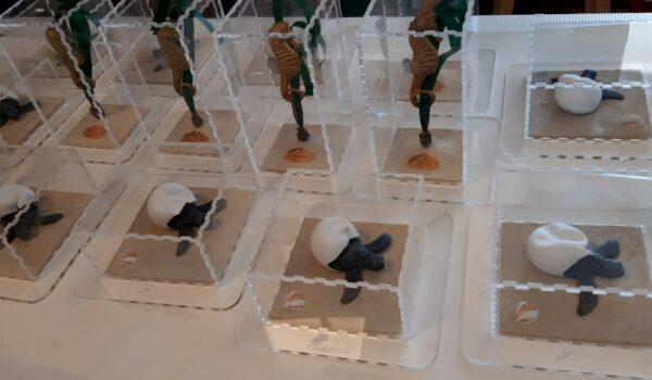Caretta e Ippocampi in teca - Modelli Finzioni Exhibits