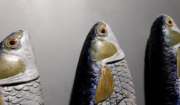 Cefali - particolare - Modelli Finzioni Exhibits